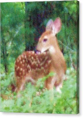 Pastel Fawn 2 Canvas Print