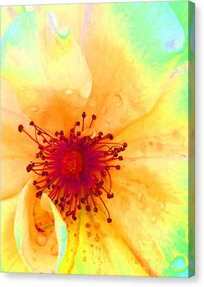 Pastel Garden Canvas Print by Charlotte Schafer