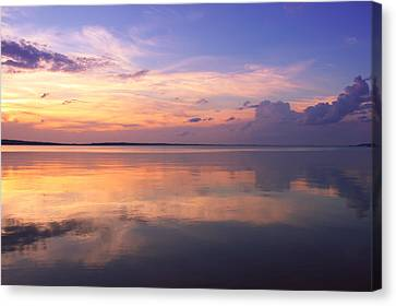Pastel Majesty Canvas Print by Rachel Cohen