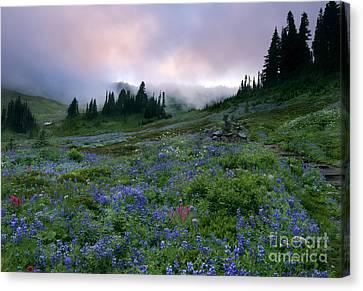 Pastel Mountain Dawn Canvas Print by Mike Dawson