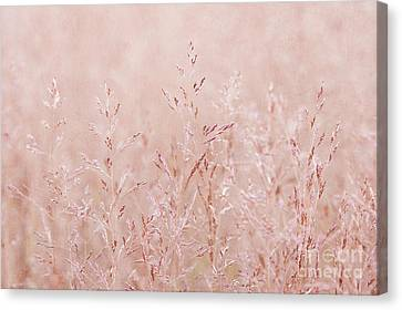 Pastel Nature Canvas Print by Svetlana Sewell