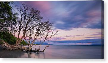 Pastels Over The Pacific Canvas Print by Hawaii  Fine Art Photography