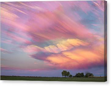 Pastel Painted Sunset Sky Canvas Print by James BO  Insogna