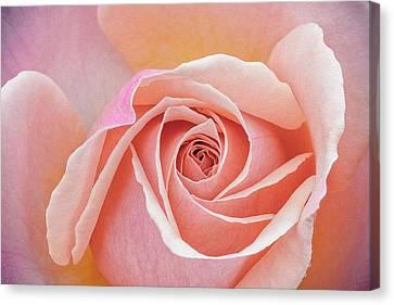 Pastel Passion Canvas Print