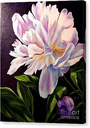 Pastel Peony Canvas Print by Anne Barberi