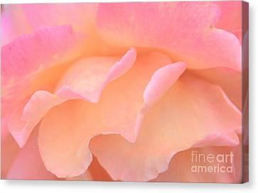 Pastel Ruffles Canvas Print