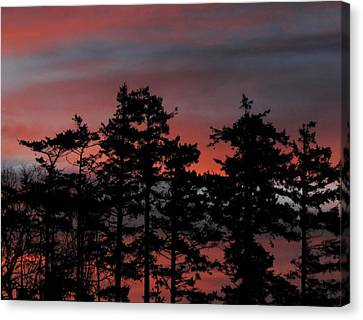 Canvas Print featuring the photograph Pastel Silhouettes by Suzy Piatt
