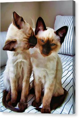 Litter Mates Canvas Print - Pastel Sketch Of Siamese Love by Elaine Plesser