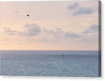 Pastel Sunset Sky At The Ocean Seascape With Flying Birds Photo Art Print Canvas Print by Ocean Photos