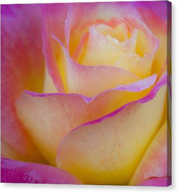 Canvas Print featuring the photograph Pastels by David Millenheft
