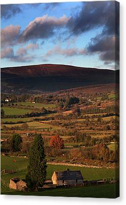 Pastoral Countryside On The Blackstairs Canvas Print