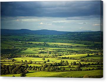 Pastoral Fields, Near Clonea, County Canvas Print by Panoramic Images