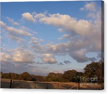 Pasture Clouds Canvas Print