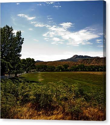 Pasture Lands Canvas Print by Gilbert Artiaga