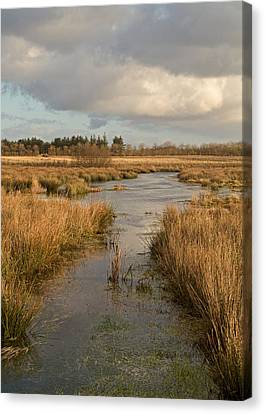 Pasture Of Plenty Canvas Print by Odd Jeppesen