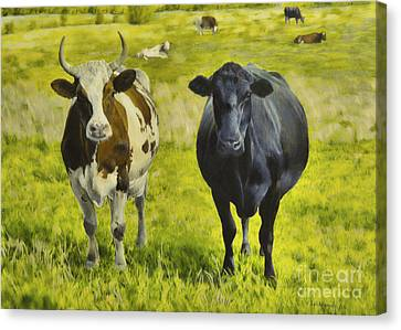 Pasture Canvas Print by Veikko Suikkanen