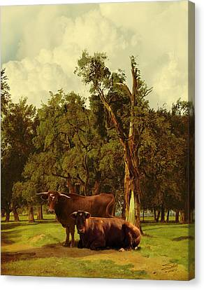 Pastureland Canvas Print by Schwartz