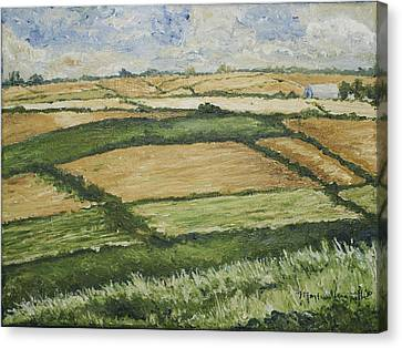 Patchwork Fields Canvas Print by Monica Veraguth