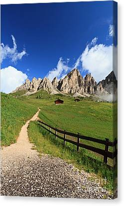Canvas Print featuring the photograph path in Gardena pass by Antonio Scarpi