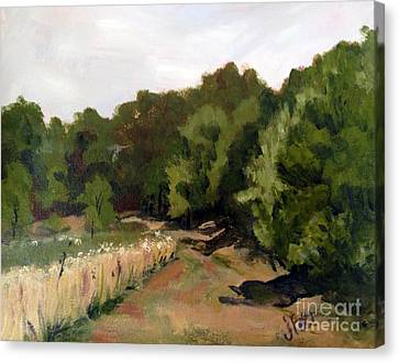 Path In The Field Canvas Print by Janet Felts