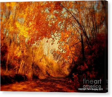 Path Of Gold Canvas Print by Tami Quigley