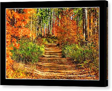 Canvas Print featuring the photograph Path Of Life by Michaela Preston