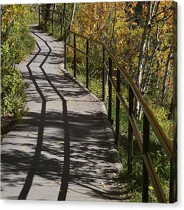 Path Shadow Canvas Print by Cheryl Miller