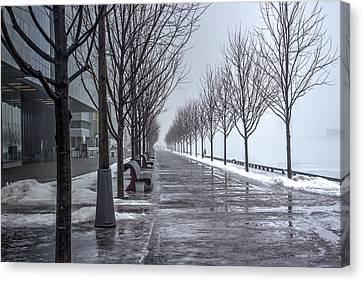 Path Through Fog Canvas Print