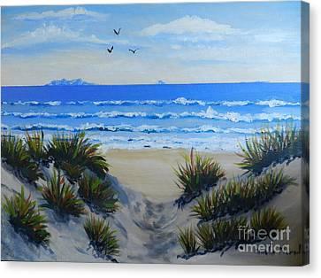 Path Through The Sand Dunes Canvas Print