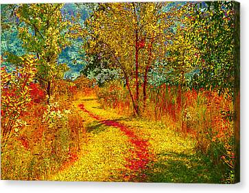 Path Through The Woods Canvas Print by William Beuther