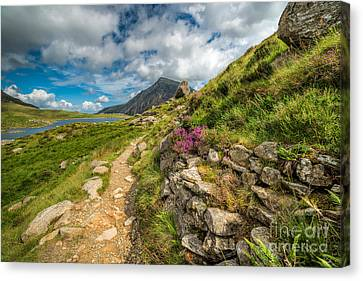 Cwm Idwal Canvas Print - Path To Lake Idwal by Adrian Evans