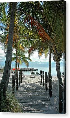 Vertical Canvas Print - Path To Smathers Beach - Key West by Frank Mari