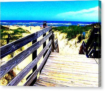 Path To The Beach Canvas Print by Scott Hamilton
