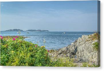 Canvas Print featuring the photograph Path To The Cove by Jane Luxton