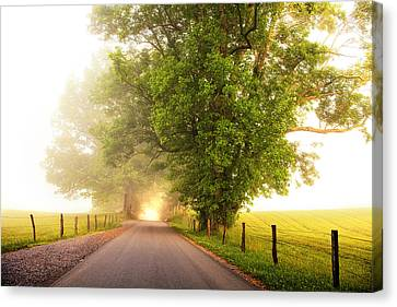 Path To  The Fog Canvas Print by Andrew Soundarajan