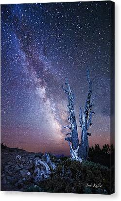 D700 Canvas Print - Path To The Stars by Josh Kulla