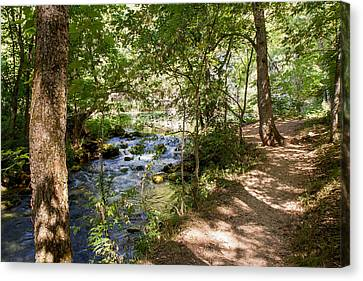 Canvas Print featuring the photograph Pathway Along The Springs by John M Bailey