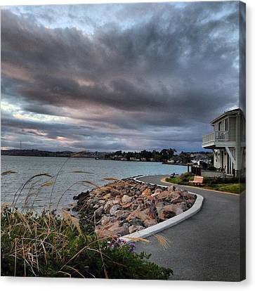 Pathway Canvas Print by Brian Maloney