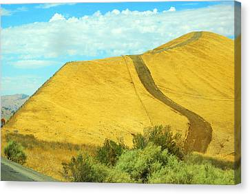 Pathway Canvas Print by Mamie Gunning