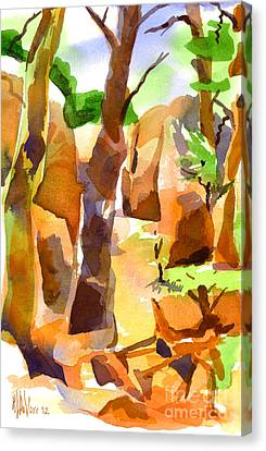 Pathway Through Elephant Rocks 1b Canvas Print by Kip DeVore