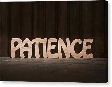 Patience Canvas Print by Donald  Erickson