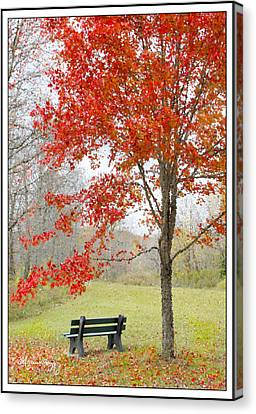Canvas Print featuring the photograph Patiently Waiting by Mariarosa Rockefeller