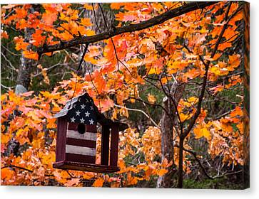 Canvas Print featuring the photograph Patriotic Birdhouse - 01 by Wayne Meyer