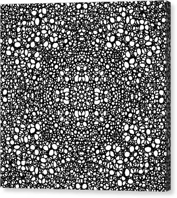 Pattern 42 - Intricate Exquisite Pattern Art Prints Canvas Print by Sharon Cummings