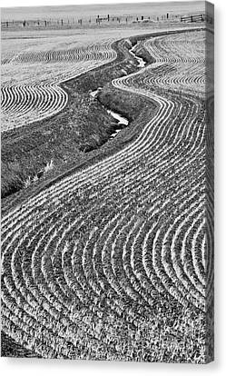 Patterns 1 Canvas Print by Don Hall