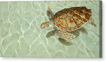Patterns In Motion - Portrait Of A Sea Turtle Canvas Print by Rob Dreyer