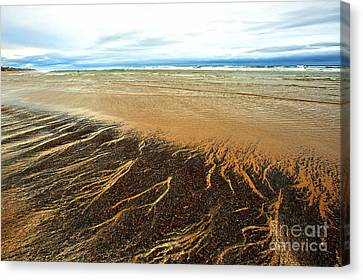 Patterns In The Tides Canvas Print by Artist and Photographer Laura Wrede