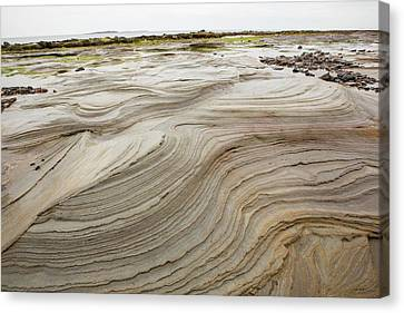 Patterns In Weathered Shale Rocks Canvas Print by Ashley Cooper