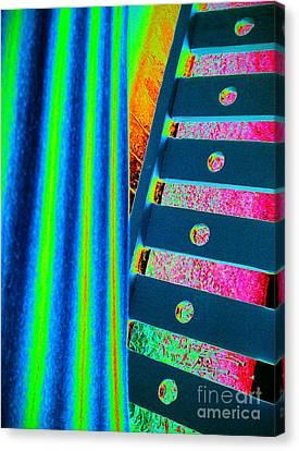 Patterns Canvas Print by Jacqueline McReynolds