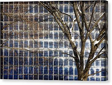 Patterns Of Winter Canvas Print by Joanna Madloch